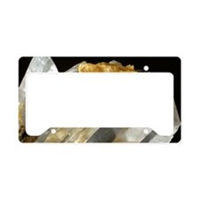 Gypsum and sulphur crystals License Plate Holder