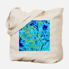 Gravity map showing Chicxulub crater, Yuc Tote Bag