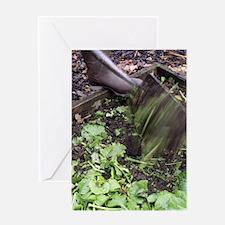 Green manure Greeting Card