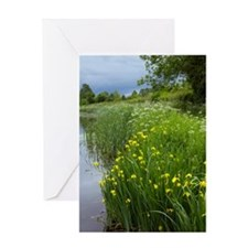 Grand Western Canal, Devon, UK Greeting Card