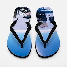 Glaciology research Flip Flops