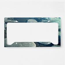 Glaciers License Plate Holder
