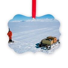 Glaciology research Ornament