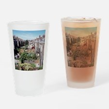 Gardens behind houses Drinking Glass