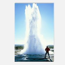Geyser erupting Postcards (Package of 8)