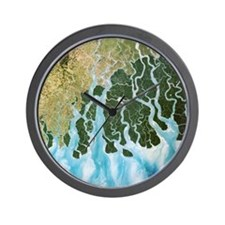 Ganges River delta, India Wall Clock