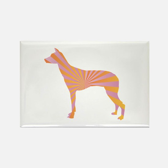 Inca Orchid Rays Rectangle Magnet (100 pack)