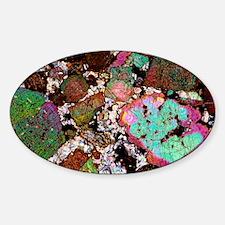 Leucitite mineral, light micrograph Sticker (Oval)
