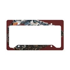 Franklinite License Plate Holder