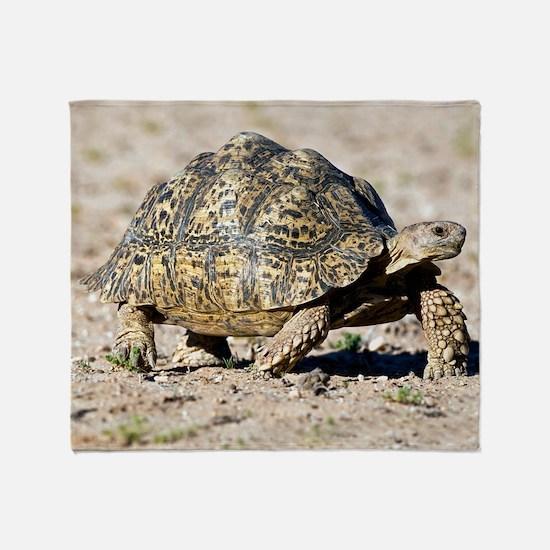 Leopard tortoise Throw Blanket