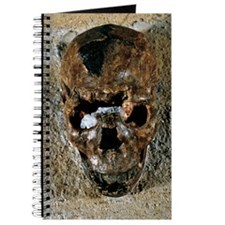 Fossilised skull of a Homo erectus boy fro Journal