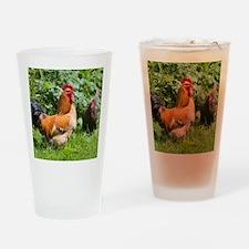 Free-range chickens Drinking Glass