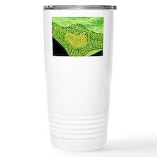 Leaf midrib, SEM Travel Mug