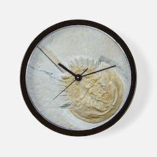Fossilised horseshoe crab Wall Clock