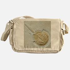 Fossilised horseshoe crab Messenger Bag