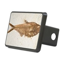Fossilised fish Rectangular Hitch Cover