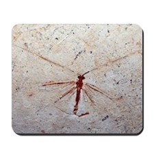Lacewing fossil Mousepad