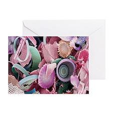 Fossilised diatoms, SEM Greeting Card