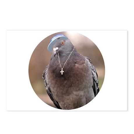 Urban Pigeon Postcards (Package of 8)