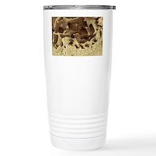Fossilised bird bone, SEM Travel Mug