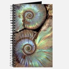Fossilised ammonites Journal