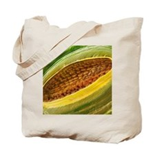 Large white butterfly larval spiracle SEM Tote Bag