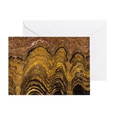 Fossil stromatolite Greeting Card