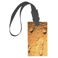 Fossilised hominid footprints fr Luggage Tag
