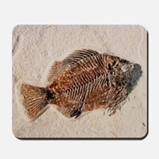Fossilised fish, Priscacara serata Mousepad