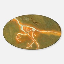 Fossil of Archaeopterix, one of the Sticker (Oval)