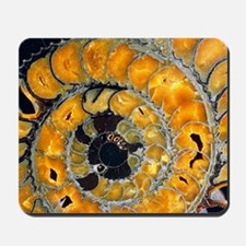 Fossil ammonite Mousepad