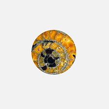 Fossil ammonite Mini Button