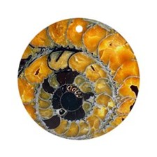 Fossil ammonite Round Ornament