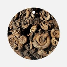 Fossilised ammonites Round Ornament