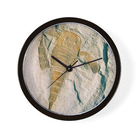 Fossil of a sea scorpion, Eurypterus re Wall Clock