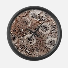 Fossil coral, thin section Large Wall Clock