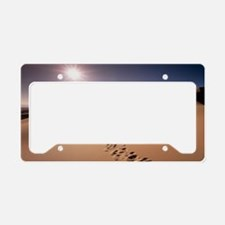 Footprints over sand dunes License Plate Holder