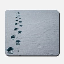 Footprints in snow Mousepad