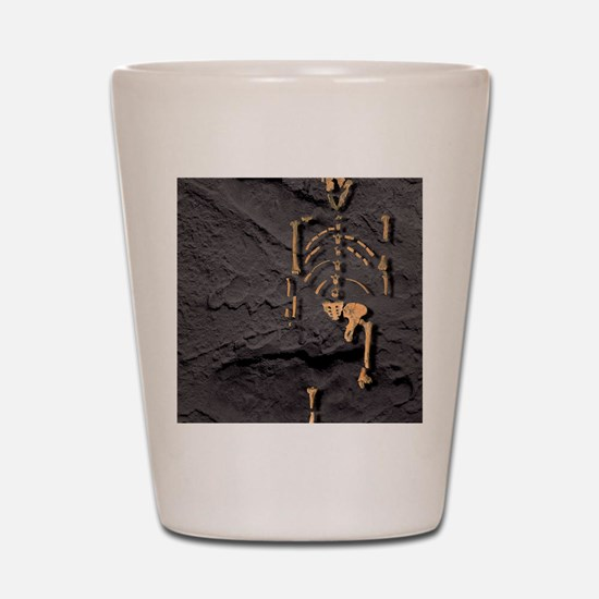 Footprints and skeleton of Lucy Shot Glass