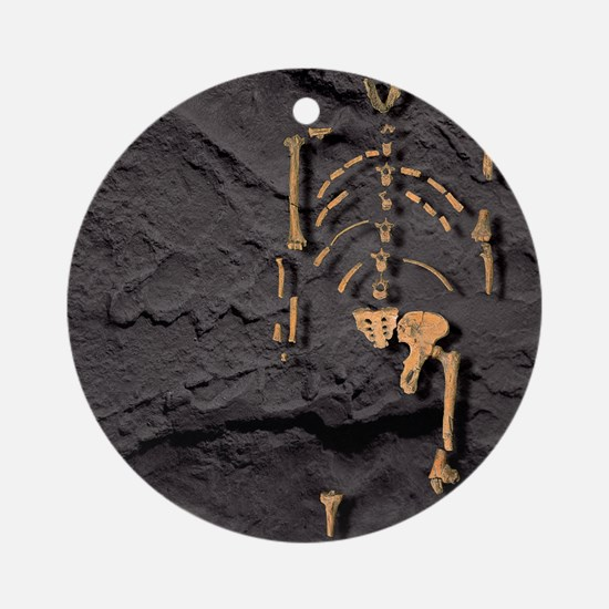 Footprints and skeleton of Lucy Round Ornament
