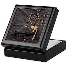 Footprints and skeleton of Lucy Keepsake Box