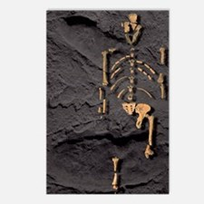 Footprints and skeleton o Postcards (Package of 8)