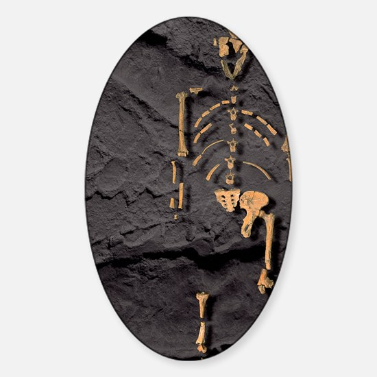 Footprints and skeleton of Lucy Sticker (Oval)