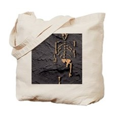 Footprints and skeleton of Lucy Tote Bag