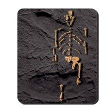 Footprints and skeleton of Lucy Mousepad