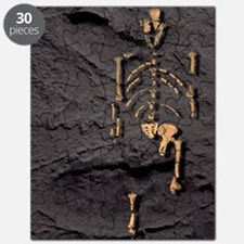 Footprints and skeleton of Lucy Puzzle