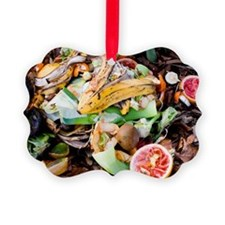 Food waste on compost heap Ornament