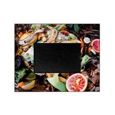 Food waste on compost heap Picture Frame