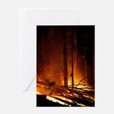 Forest fire Greeting Card