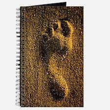 Footprint in sand Journal
